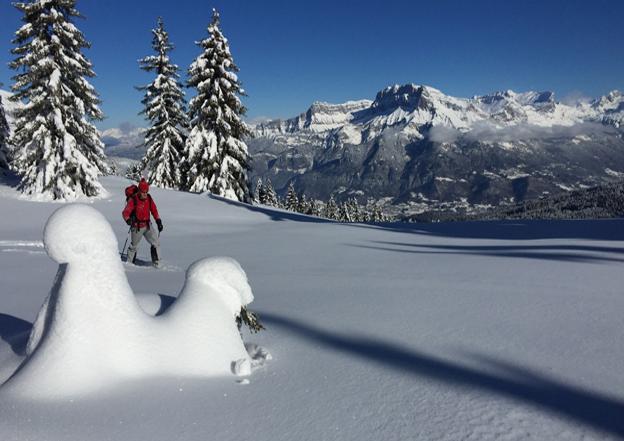 Rondeurs hivernales